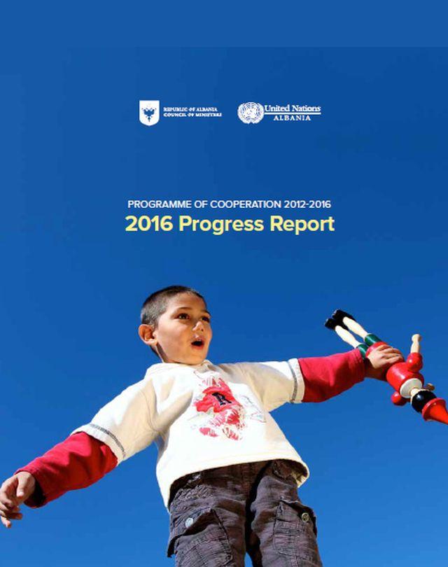 2016 Progress Report