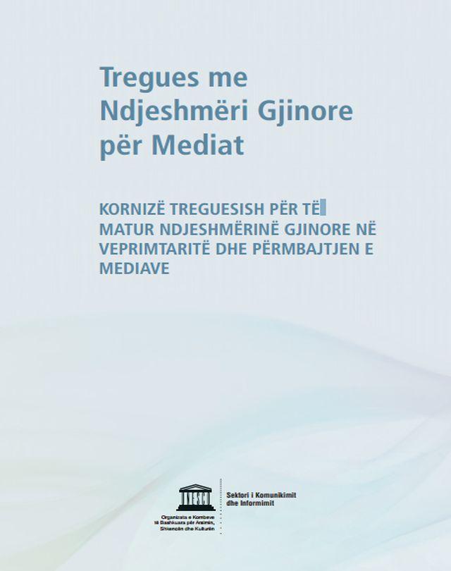 Gender Sensitive Indicators for Media
