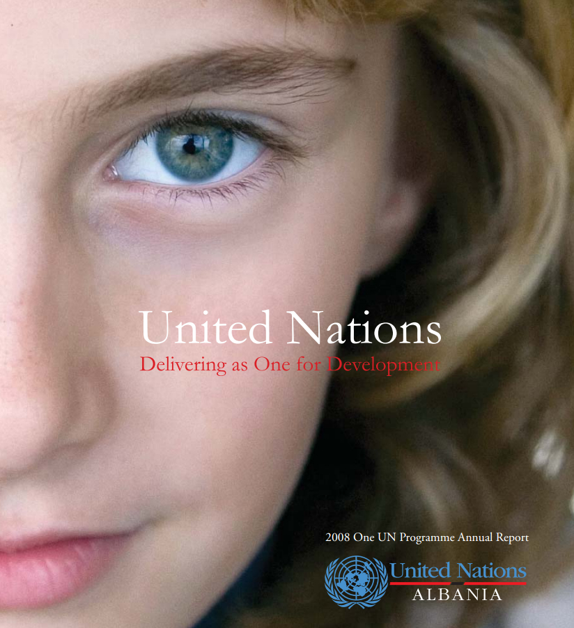 One UN Annual Report 2008
